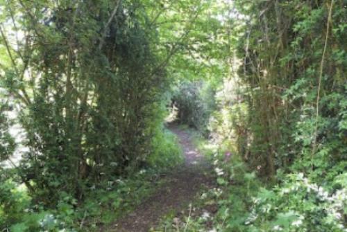 Sentier de randonnée Camous
