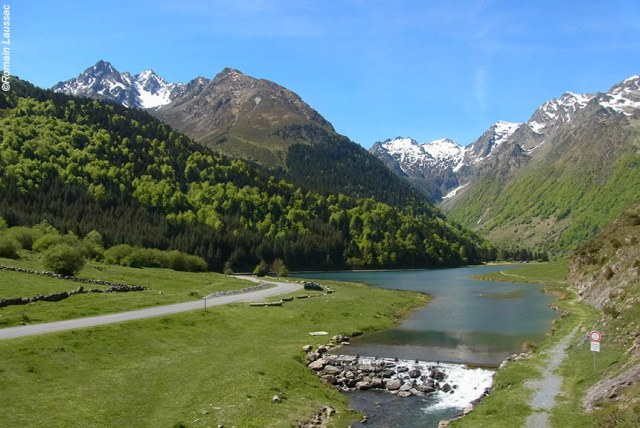 PURELY PYRENEES