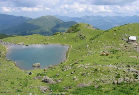 lac arou