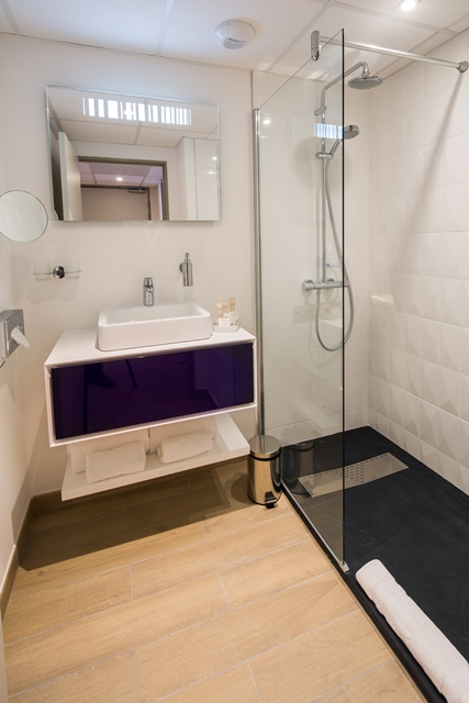 Lourdes best western plus hotel le rive droite et spa (2)