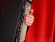 accordeon WEB